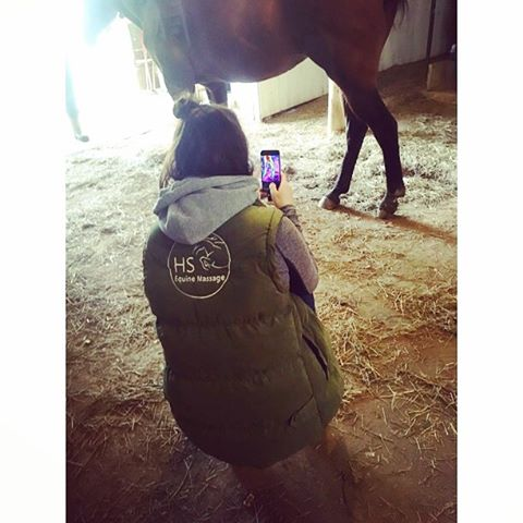 Guest Post: How I Use Thermal Imaging in Equine Massage